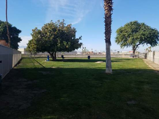 Mulligan Dog Park2