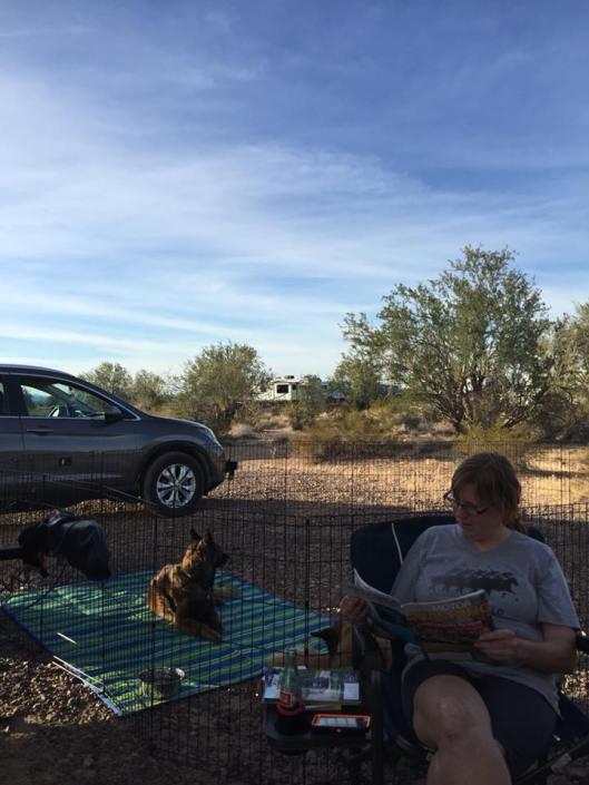 quartzite camping 7
