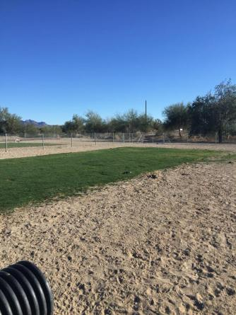 quartzite dog park 2